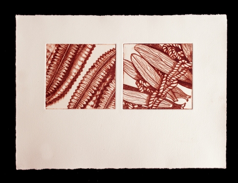 Artefacts 3 & 4, Drypoint prints