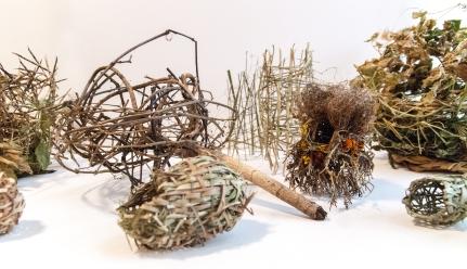 Ross Belton - Nest