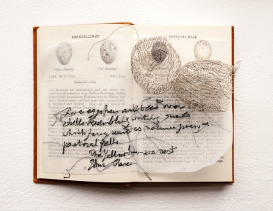 Natural History 6, Anita Bruce
